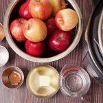 instant pot apple sauce ingredients
